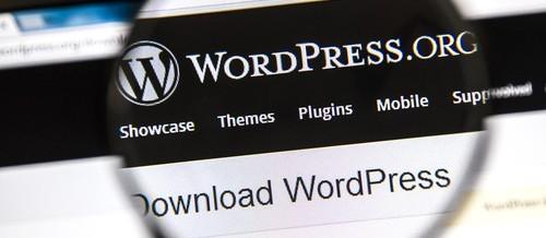 Web Design: WordPress Platform