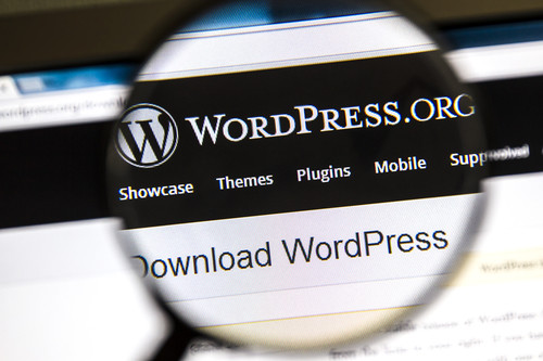 WordPress and Web Design - Web Design: WordPress Platform