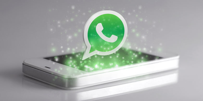 News on Whatsapp - What's Up with WhatsApp?